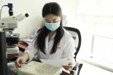 【赞!赞!赞!】病理科刘慧教授受聘为国家级淋巴瘤建设项目组专家